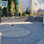 Backyard Basketball Court Minneapolis, MN