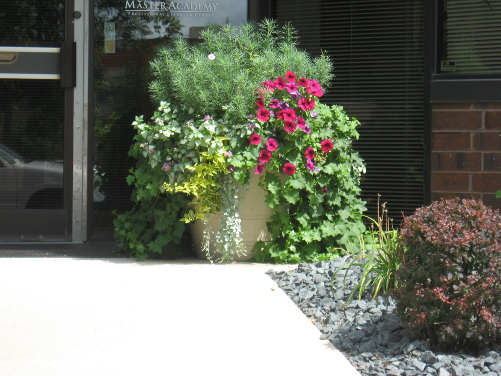 Commercial annuals 2 commercial landscaping minneapolis for Curbside garden designs