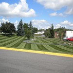 Commercial Turf Landscape Design Minneapolis