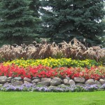 Commercial Annuals Landscape Design Minneapolis