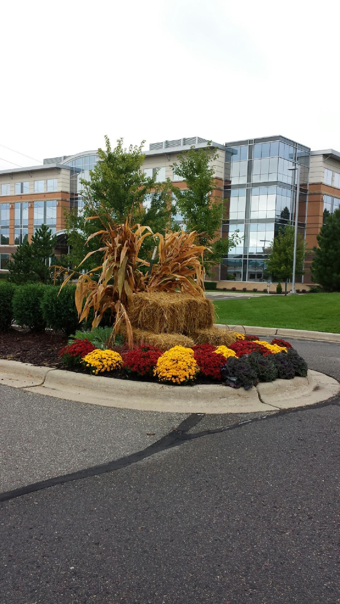Commercial - Curbside Landscape