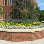 Commercial Annuals Landscape Design Minneapolis